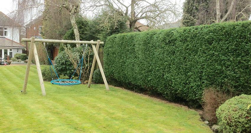 Hedge Cutting East Devon