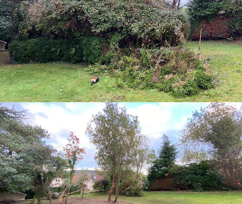 Garden Clearance Seaton